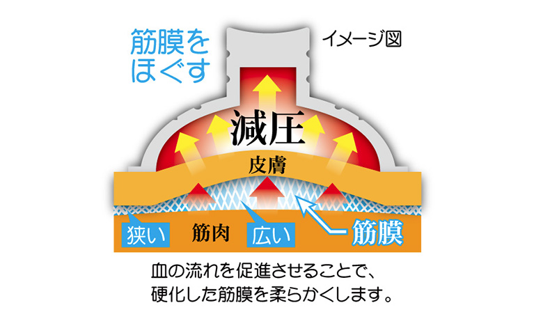 きゅ〜ぱこカップ
