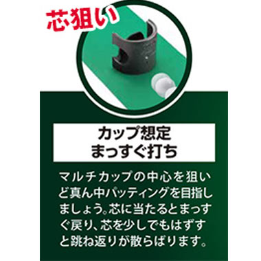 タバタマルチカップ
